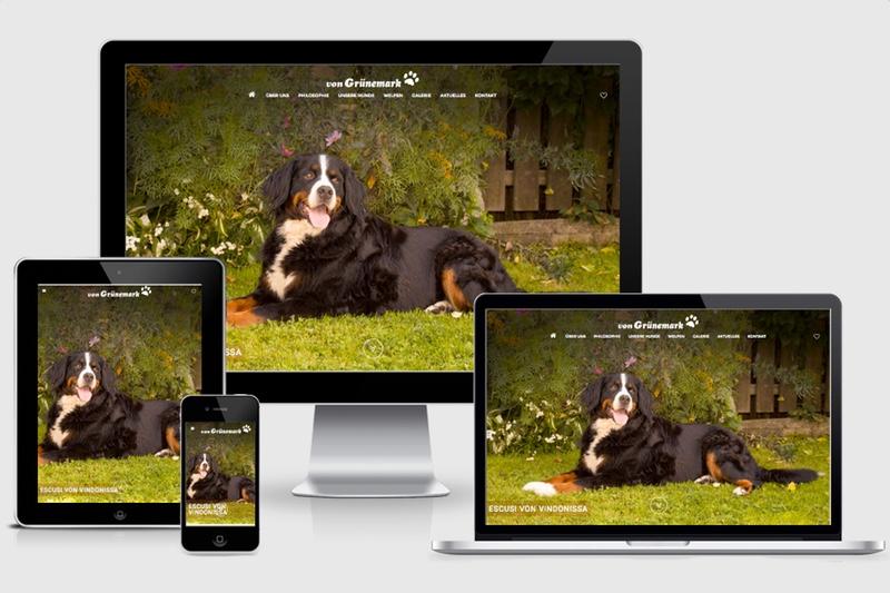 Unsere Website ist zum ersten Mal online